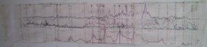 eric-dollard-seismic-data